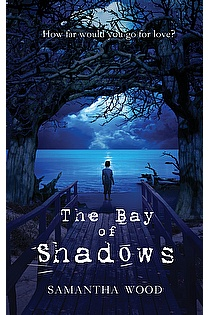 The Bay of Shadows ebook cover