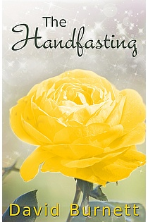 The Handfasting ebook cover
